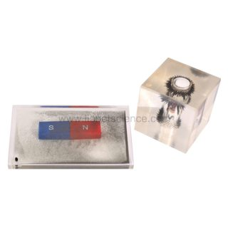 1050489 magnetic Field demonstration