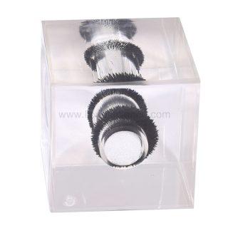 1052593 (2) magnetic Field demonstration